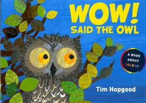 Wow Said the Owl book cover