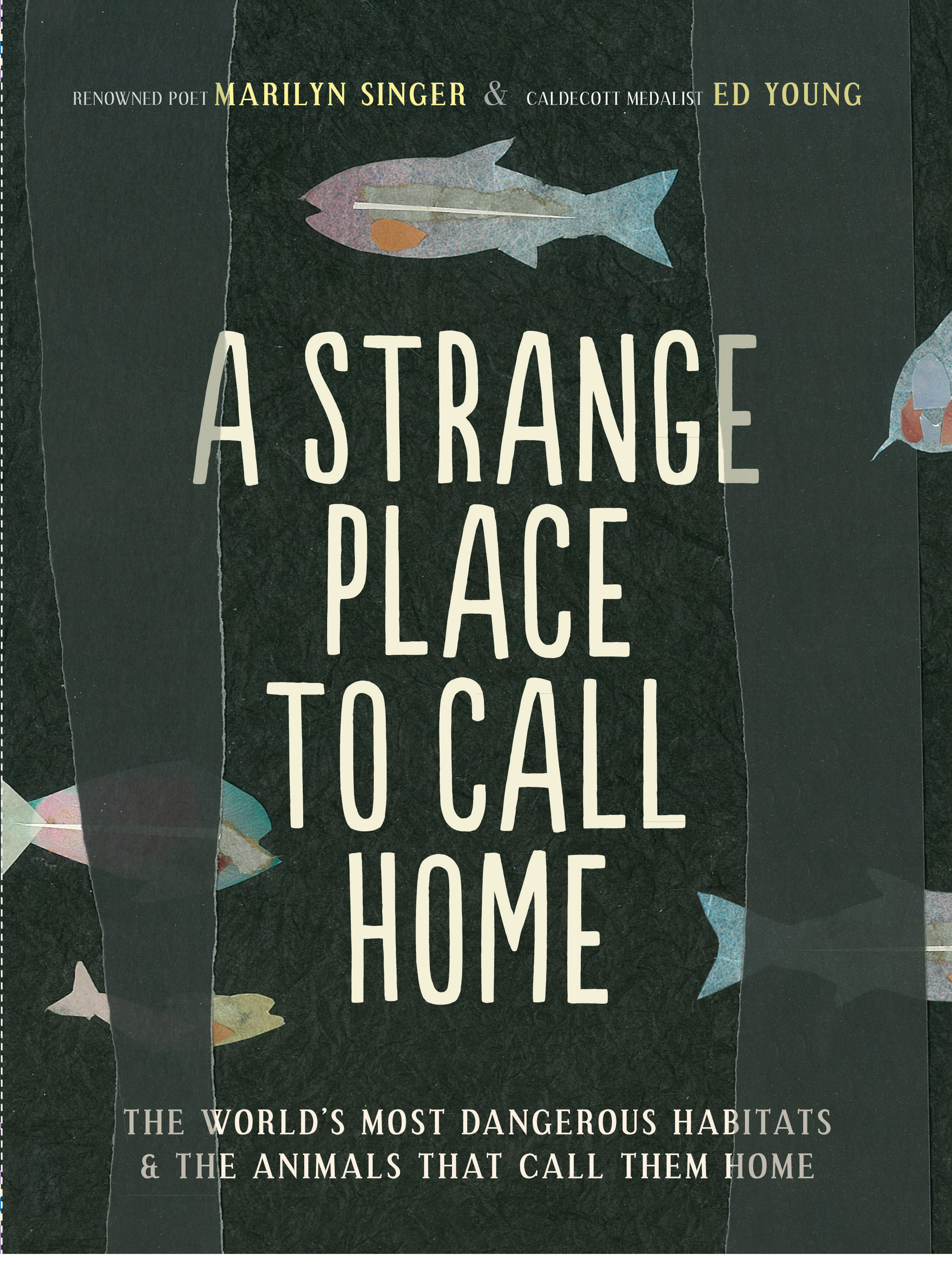 a place to call home essay Everyone deserves a place to call home the sentiment—drawn from this issue's  opening essay—is simple, and we all know it's easier said than done but given.