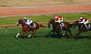 120909_Rosehill_Races