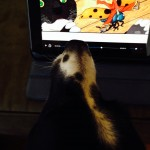 Sometimes Parker dog wants to watch Hoopla movies too! photo by Paige Bentley-Flannery