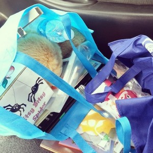 The passenger seat of my car this past fall, full of storytime materials! [Photo courtesy of the author, originally posted on Instagram.]