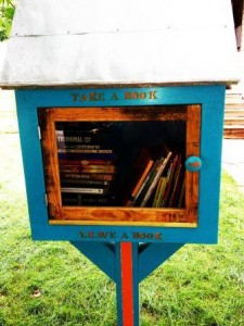 Mini-library in Rochester, MN.