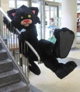 Bad Kitty sliding down the banister