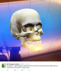 zSpace Skull Image