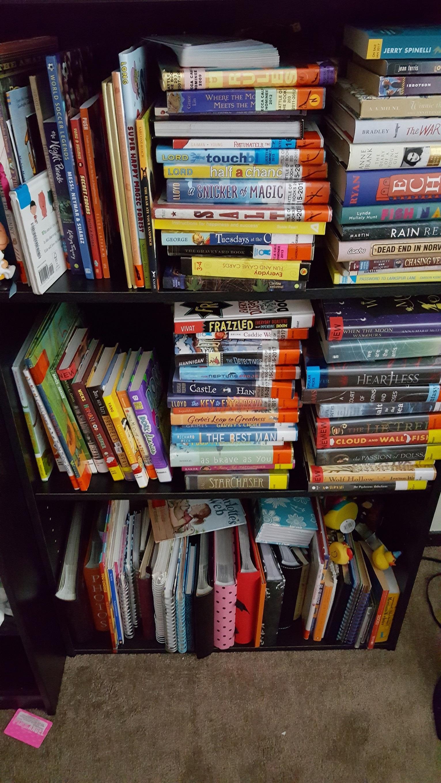 Photo of overflowing bookshelf