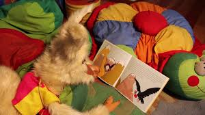 Leonora the Llama reads a picture book