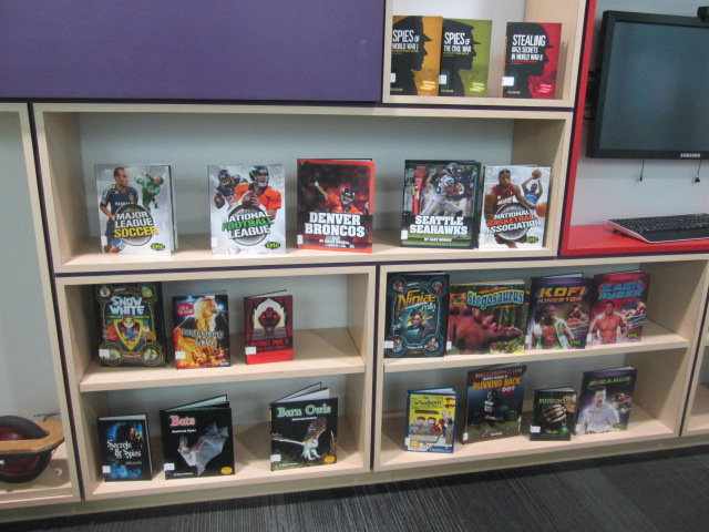 Book display of new books