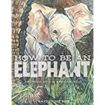 Cover image of How to be an Elephant