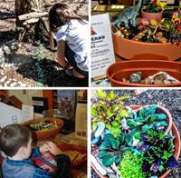 Plants in pots & children working in garden