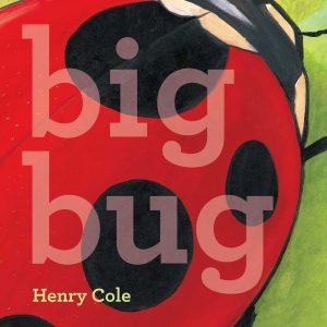 Cover image of Big Bug