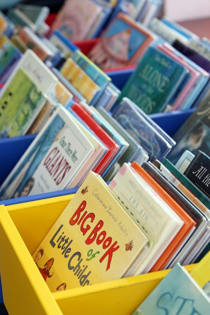 Multiple bins of picture books