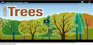 globe trees app
