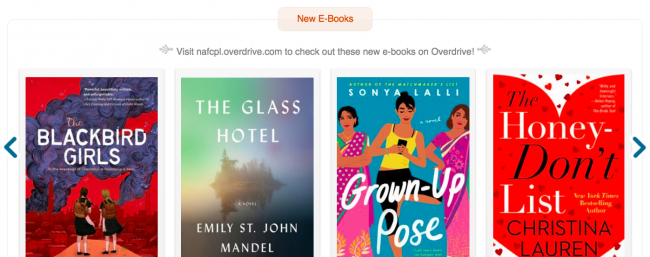 Screenshot of an Overdrive digital booklist for marketing digital books