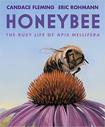 Cover image of Honeybee by Candace Fleming