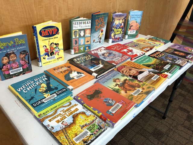 Our easy chapter book table, displaying a variety of books for children to browse while we did summer reading under construction.